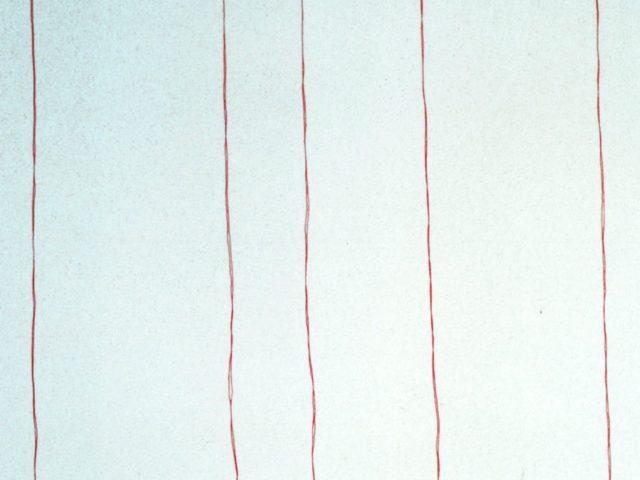 Aghi e fili rossi