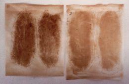 Carte del pane